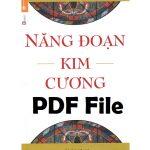 nang doan kim cuong pdf