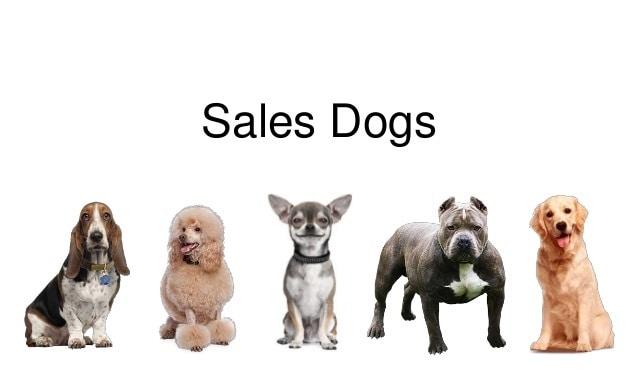 sales dogs blair singer